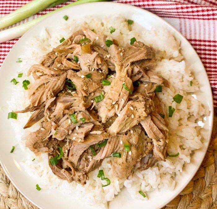 Crock Pot Teriyaki Shredded Pork Recipe